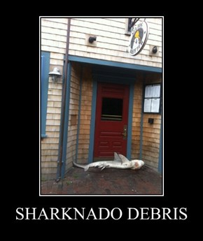Beware the Sharknado
