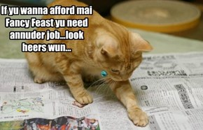 If yu wanna afford mai Fancy Feast yu need annuder job...look heers wun...