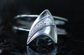Planning to Propose to a Trekkie?