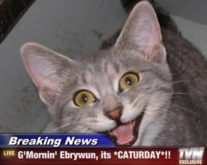 Breaking News - G'Mornin' Ebrywun, its *CATURDAY*!!