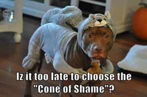 "Iz it too late to choose the ""Cone of Shame""?"