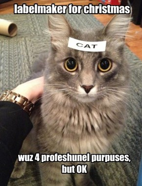 Last time kitteh buys presents 4 anyone.