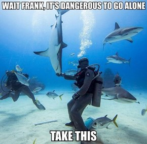 You'll Always Be Safe With a Shark