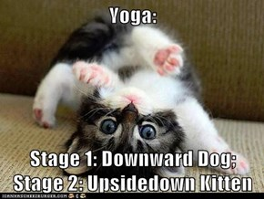 Yoga:  Stage 1: Downward Dog; Stage 2: Upsidedown Kitten