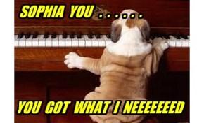 SOPHIA  YOU   .  .  .  .  .  .