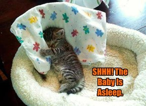 SHHH! The Baby Is Asleep.