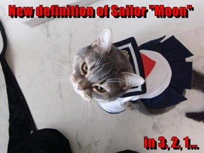 "New definition of Sailor ""Moon""                                                      in 3, 2, 1..."