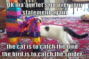 OK ma'am, let's go over your statement again  the cat is to catch the bird ...          the bird is to catch the spider ...