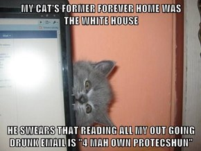 """MY CAT'S FORMER FOREVER HOME WAS           THE WHITE HOUSE  HE SWEARS THAT READING ALL MY OUT GOING DRUNK EMAIL IS """"4 MAH OWN PROTECSHUN"""""""
