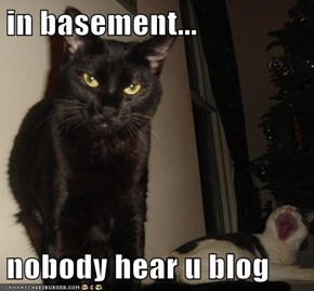 in basement...  nobody hear u blog