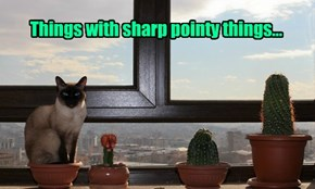 Things with sharp pointy things...
