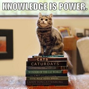 KNOWLEDGE IS POWER.