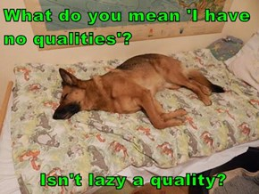 What do you mean 'I have no qualities'?        Isn't lazy a quality?