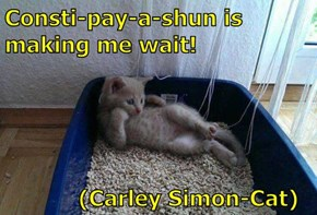 Consti-pay-a-shun is making me wait!             (Carley Simon-Cat)
