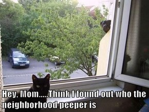 Hey, Mom.....Think I found out who the neighborhood peeper is