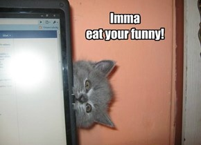 Or you could just feed me. Your choice.