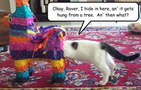Okay, Rover, I hide in here, an' it gets hung from a tree.  An' then what?
