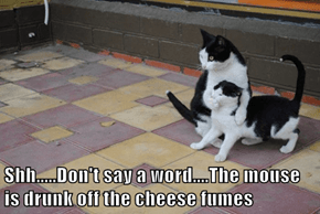 Shh.....Don't say a word....The mouse is drunk off the cheese fumes