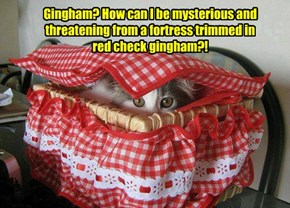 Gingham? How can I be mysterious and threatening from a fortress trimmed in  red check gingham?!