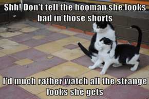 Shh! Don't tell the hooman she looks bad in those shorts  I'd much rather watch all the strange looks she gets