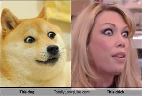 This dog Totally Looks Like This chick