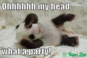 Ohhhhhh my head  what a party!