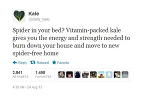 Kale: The Miracle Vegetable