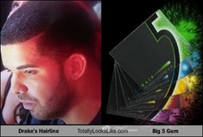 Drake's Hairline Totally Looks Like Big 5 Gum