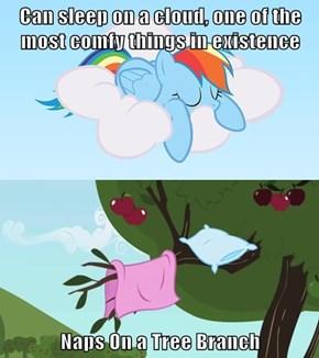 Rainbow dash is Genius