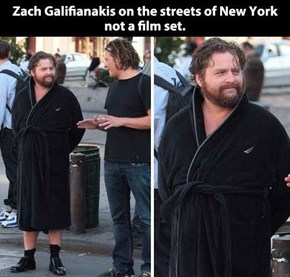 Zach Galifianakis Wears Whatever He Wants