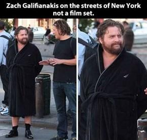 Zach Galifianakis Wears Whatever He Wants