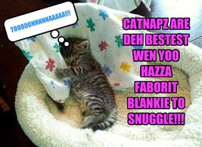 CATNAPZ ARE DEH BESTEST WEN YOO HAZZA FABORIT BLANKIE TO SNUGGLE!!!