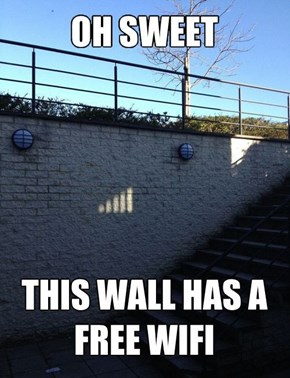 This Wall is the Best Chill Out Spot