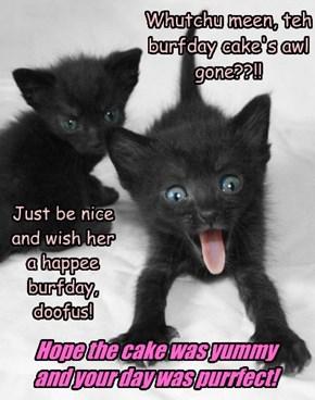 Whutchu meen, teh burfday cake's awl gone??!!