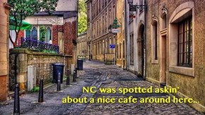 Help theComfeeSofa find NC - seventh sighting