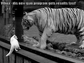 Whoa - dis new gym program gets results fast!