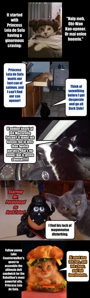 Cat Wars Episode D: Return to the Deli