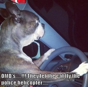 OMD's.....!!! They let the cat fly the police helicopter.....