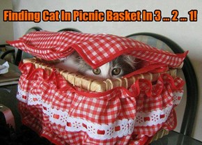 Finding Cat In Picnic Basket In 3 ... 2 ... 1!