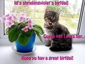 Hope yu hav a great birfdai, shriekingviolet!