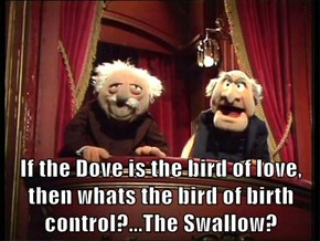 If the Dove is the bird of love, then whats the bird of birth control?...The Swallow?