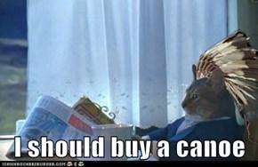 I should buy a canoe