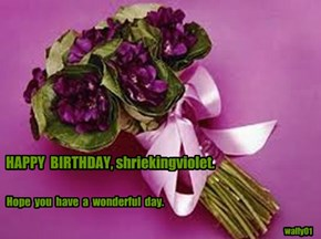 HAPPY  BIRTHDAY, shriekingviolet.