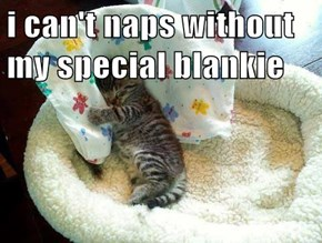 i can't naps without my special blankie