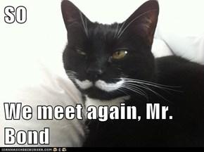 SO  We meet again, Mr. Bond