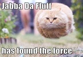 Jabba Da Fluff  has found the force
