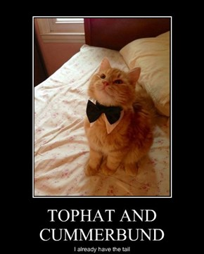 TOPHAT AND CUMMERBUND