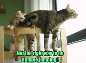 Not the right way to do Bungee jumping !