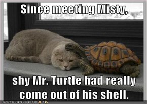 Since meeting Misty,  shy Mr. Turtle had really come out of his shell.
