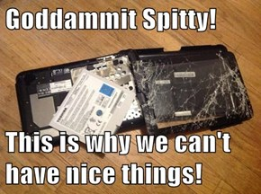 Goddammit Spitty!  This is why we can't have nice things!